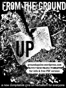 Ground Up Zine